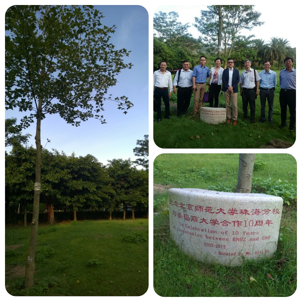A maple tree had been planted in celebration of the 10th anniversary of cooperation between SMU and BNUZ.